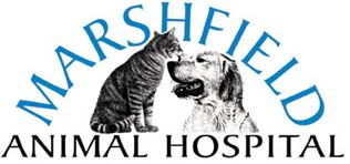 Marshfield Animal Hospital